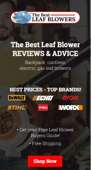 thebestleafblowers.com