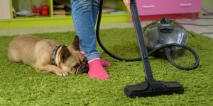 best pet hair vacuum cleaners
