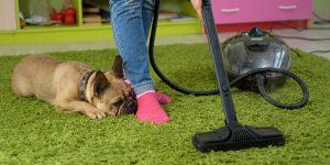 best pet hair vacuum cleaners